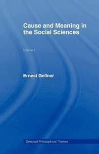 bokomslag Cause and Meaning in the Social Sciences