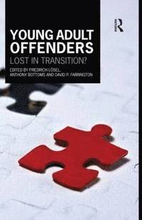 bokomslag Young Adult Offenders
