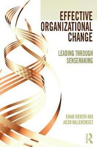 bokomslag Effective Organizational Change: Leading Through Sensemakin