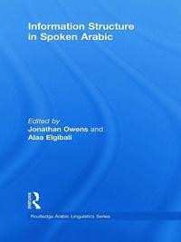 bokomslag Information Structure in Spoken Arabic