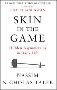 bokomslag Skin in the Game
