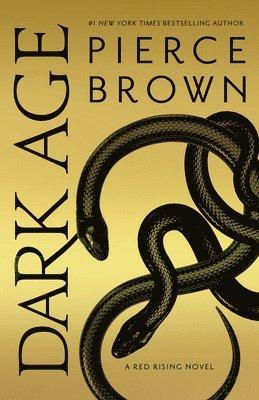 bokomslag Dark Age