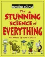 bokomslag Stunning Science Of Everything