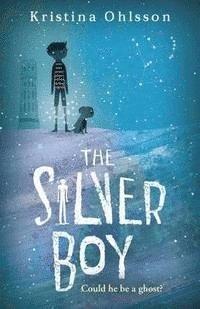 bokomslag Silver boy