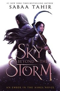 bokomslag Sky Beyond The Storm