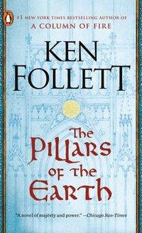 bokomslag Pillars Of The Earth