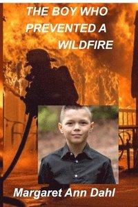 bokomslag The boy who prevented a wildfire