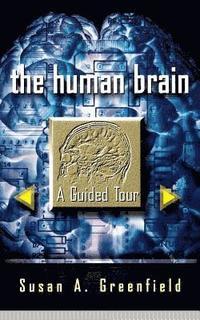 bokomslag The Human Brain