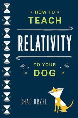 bokomslag How to Teach Relativity to Your Dog