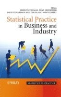 bokomslag Statistical Practice in Business and Industry