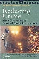 bokomslag Reducing Crime