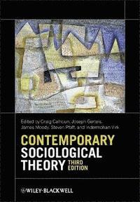 bokomslag Contemporary Sociological Theory
