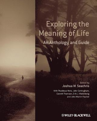bokomslag Exploring the Meaning of Life: An Anthology and Guide