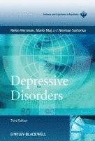 bokomslag Depressive Disorders