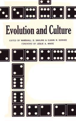 bokomslag Evolution and Culture