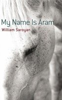 bokomslag My Name Is Aram
