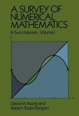 bokomslag A Survey of Numerical Mathematics