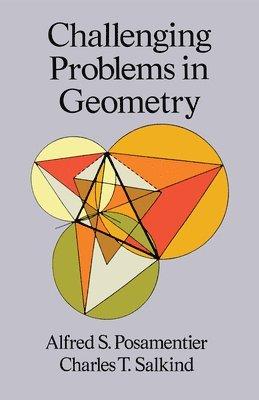 bokomslag Challenging problems in geometry