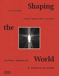 bokomslag Shaping the World
