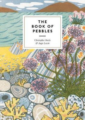 bokomslag The Book of Pebbles