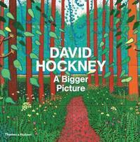 bokomslag David Hockney