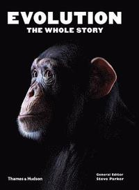 bokomslag Evolution: The Whole Story