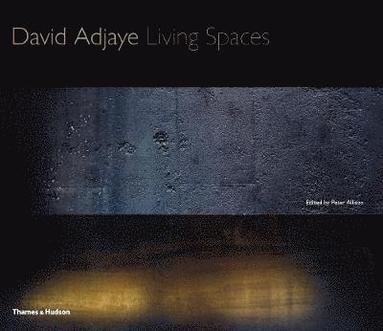 bokomslag David Adjaye: Living Spaces