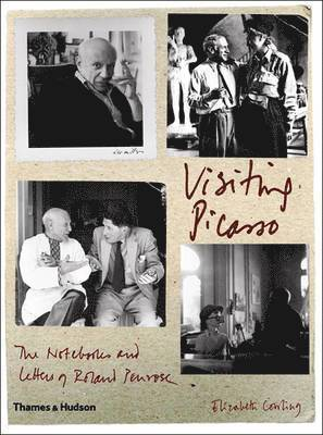 bokomslag Visiting Picasso