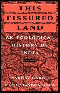bokomslag This Fissured Land