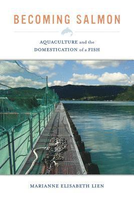 bokomslag Becoming salmon - aquaculture and the domestication of a fish