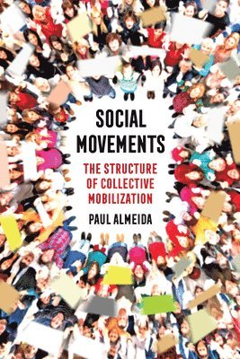 bokomslag Social Movements: The Structure of Collective Mobilization