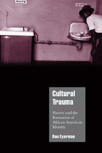 bokomslag Cultural Trauma