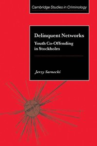 bokomslag Delinquent Networks