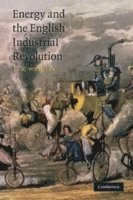 bokomslag Energy and the English Industrial Revolution