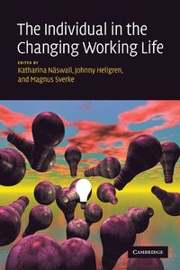 bokomslag The Individual in the Changing Working Life