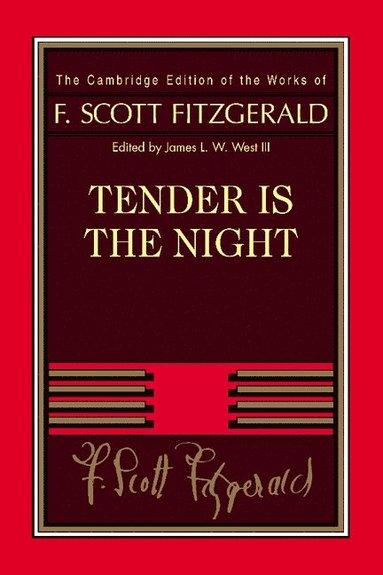 bokomslag Tender Is the Night