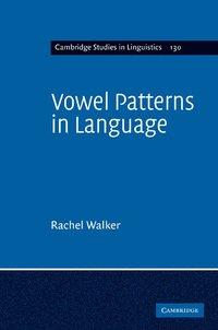 bokomslag Vowel Patterns in Language