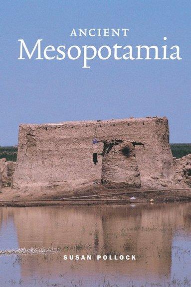 bokomslag Ancient Mesopotamia