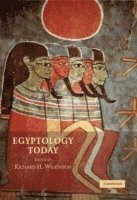 bokomslag Egyptology Today