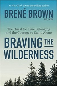 bokomslag Braving the Wilderness