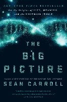 bokomslag The Big Picture: On the Origins of Life, Meaning, and the Universe Itself