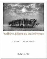 bokomslag Worldviews, Religion, and the Environment