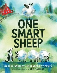 bokomslag One Smart Sheep