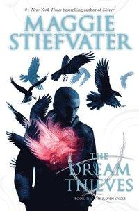 bokomslag Dream Thieves (The Raven Cycle, Book 2)
