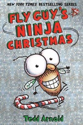 bokomslag Fly Guy's Ninja Christmas (Fly Guy #16)