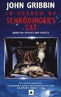 bokomslag In Search of Schrodinger's Cat