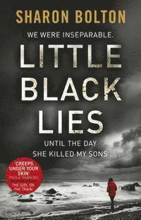 bokomslag Little Black Lies