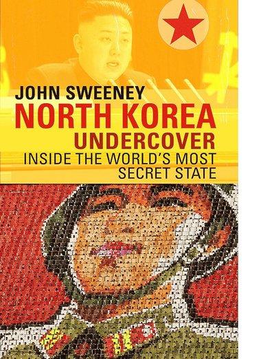 bokomslag North korea undercover