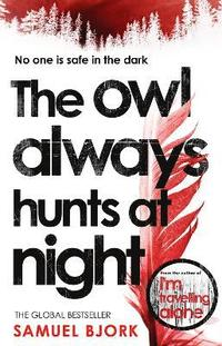 bokomslag The Owl Always Hunts at Night