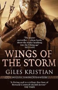 bokomslag Wings of the Storm